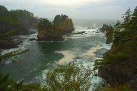 Untamed Twins - Cape Flattery