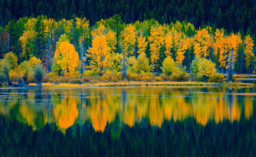Snake River Reflection : Reflections : JOHN MURK PHOTOGRAPHY